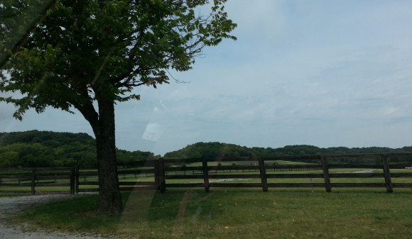 There are fences everywhere in Franklin Tennessee.